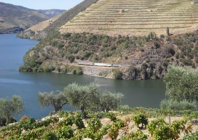 2009 Udsigt Quinta do Pego
