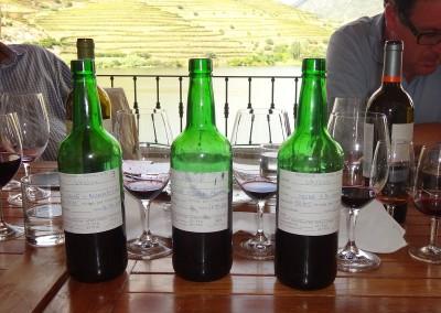 2014 Special Vesuivo smagning - på Vesuvio
